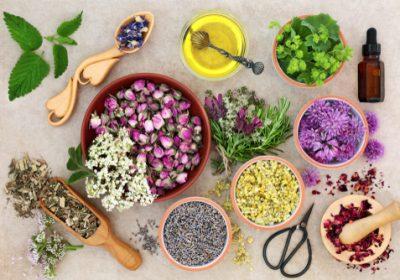 Aromatherapie kruiden en planten